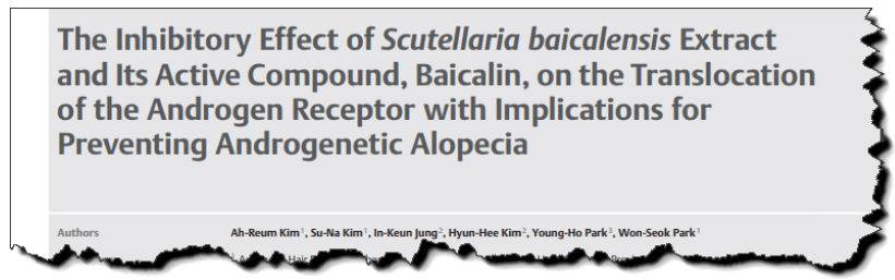 The inhibitory effect of Scutellaria baicalensis extract and its active compound, baicalin, on the translocation of the androgen receptor with implications for preventing androgenetic alopecia.
