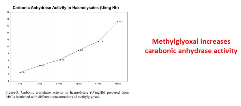 Methyglyoxal increases carabonic anhydrase activity