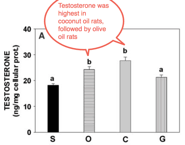This bad fat depresses your testosterone