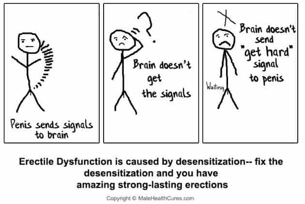 Erectile Dysfunction is caused by desensitization-- fix the desensitization and you have amazing strong-lasting erections
