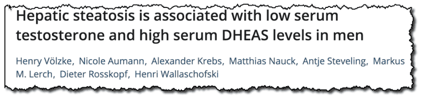 Hepatic steatosis is associated with low serum testosterone and high serum DHEAS levels in men