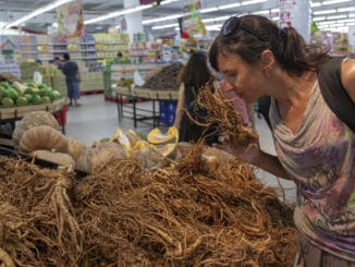 girl in the store chooses ginseng root.