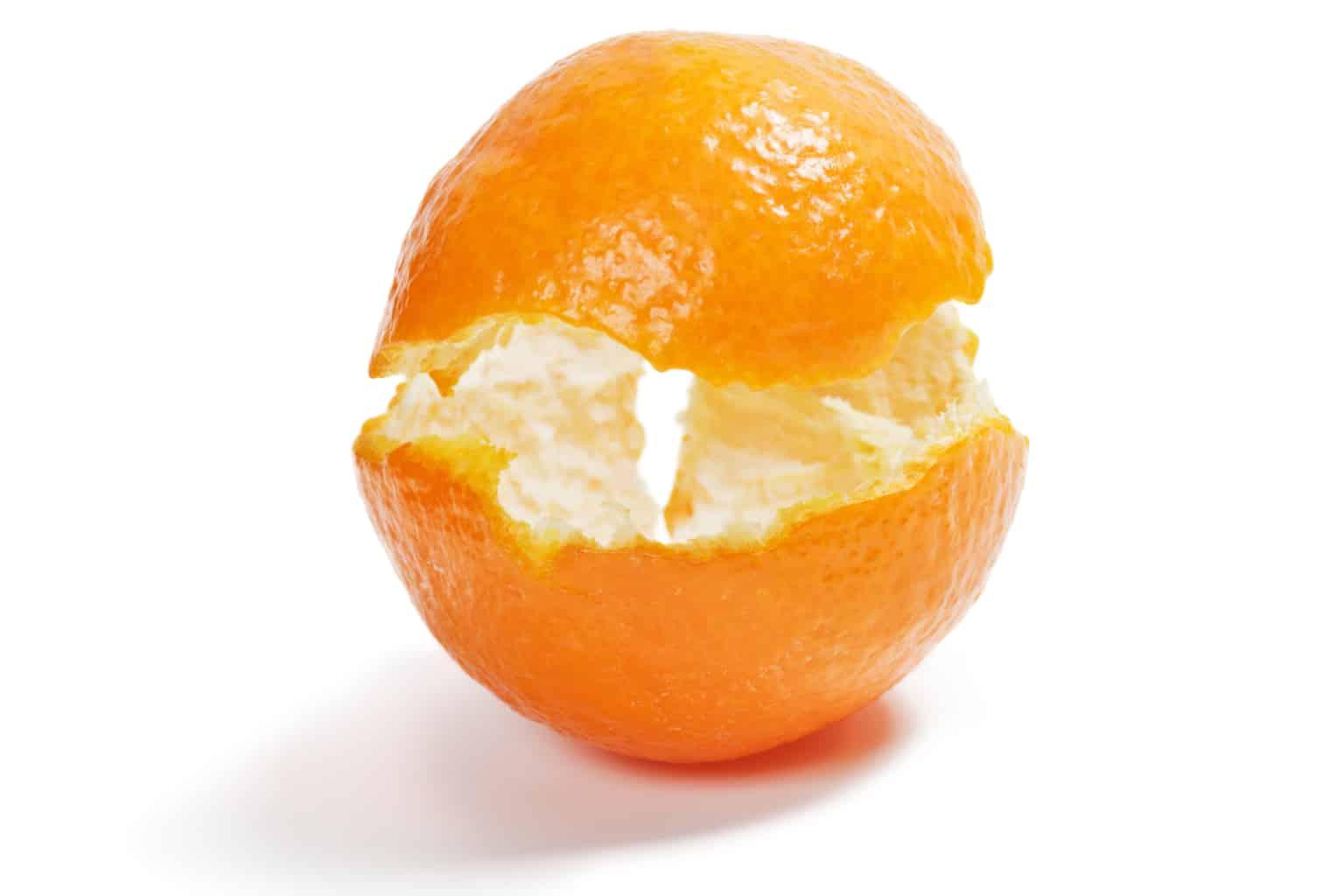 Citrus peel prevents obesity