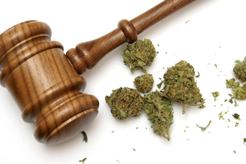 Will This Discovery Make Trump Legalize Marijuana?