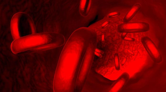 What causes low penis blood flow