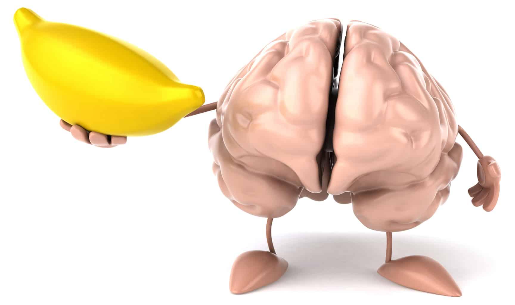 Brain-Penile connection