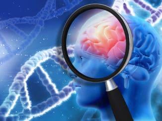 This Myokine in the Brain Saves Men from Alzheimer's Disease