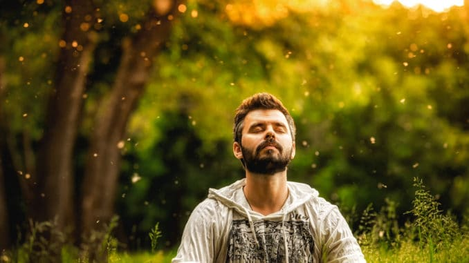 A bearded man is meditating on green grass in the park with face raised up to sky and eyes closed on sunny summer day.