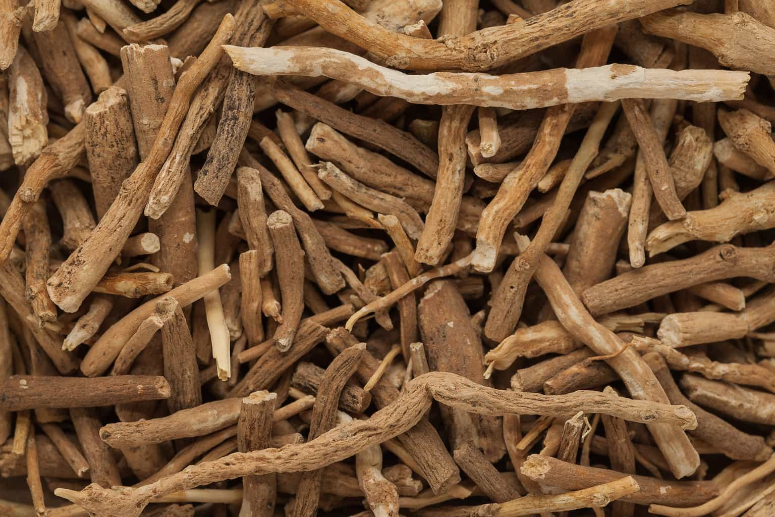 Ashwagandha raises testosterone and downregulates estrogen receptor