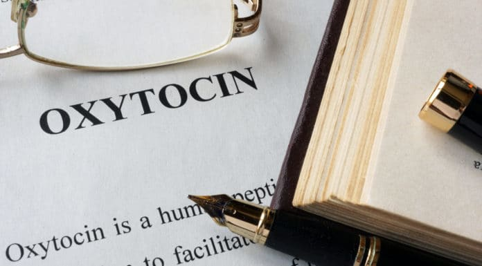 Oxytocin builds strong erections in men even before touch