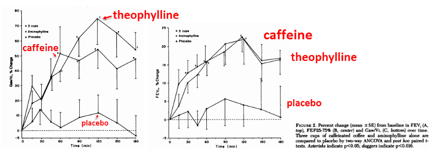 The results indicate that caffeine actually works to improve these three parameters – and even approaches the efficacy of theophylline in every respect: