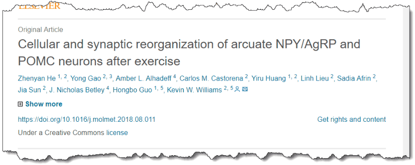 Cellular and synaptic reorganization of arcuate NPY/AgRP and POMC neurons after exercise