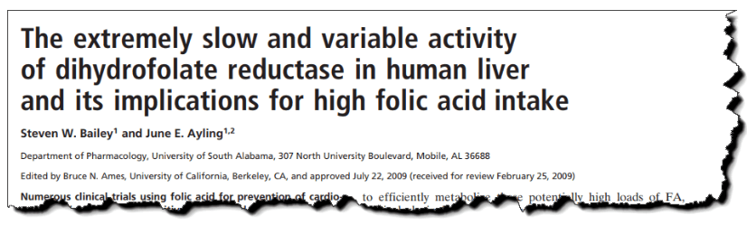The extremely slow and variable activity of dihydrofolate reductase in human liver and its implications for high folic acid intake.
