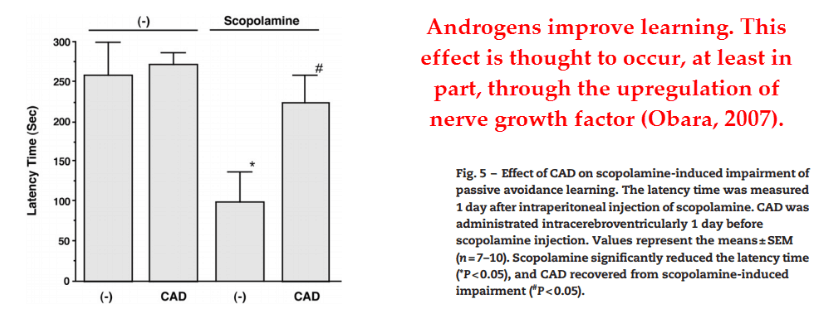 And the control group – given cyclo‑androstenedione but not scopolamine – also showed improvement.