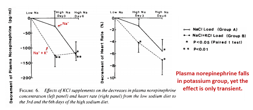 Plasma norepinephrine falls in potassium group, yet the effects is only transient.
