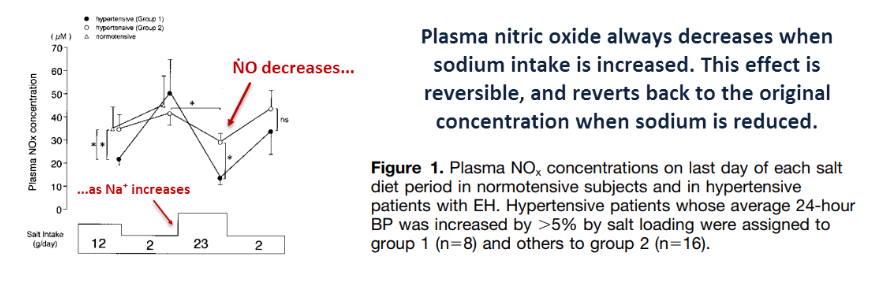 Plasma nitric oxide always decreases when sodium intake is increased.. This effect is reversible, and reverts back to the original concentration when sodium is reduced.