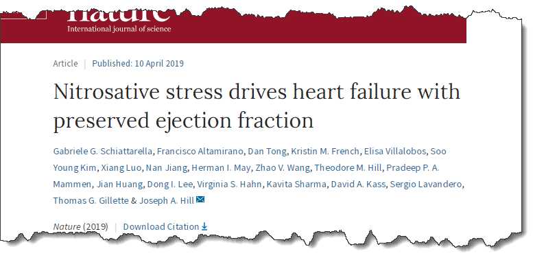 Nitrosative stress drives heart failure with preserved ejection fraction