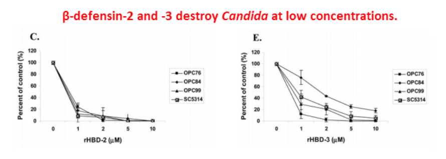 Beta-defensin-2 and -3 destroy Candida at low concentrations.