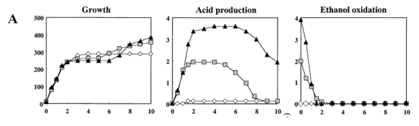 Growth - Acid production - Ethanol oxidation
