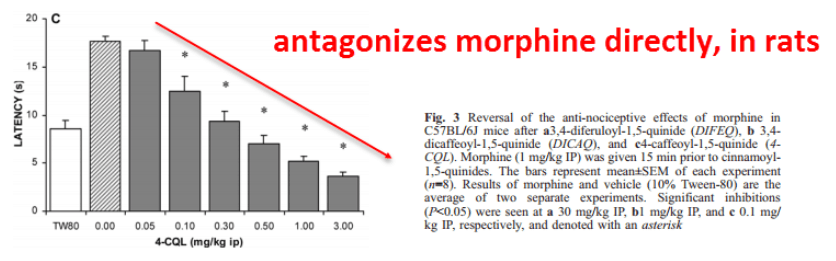antagonizes morphine directly, in rats