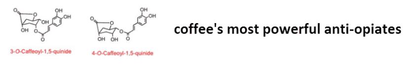 coffee's most powerful anti-opiates