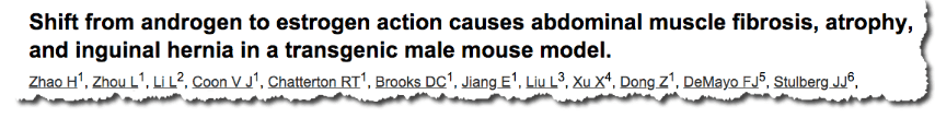 Shift from androgen to estrogen action causes abdominal muscle fibrosis, atrophy, and inguinal hernia in a transgenic male mouse model
