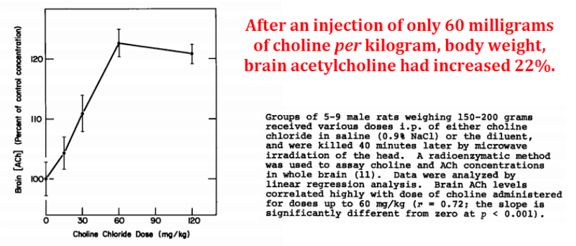 After an injection of only 60 milligrams of choline per kilogram, body weight, brain acetylcholine had increased 22%