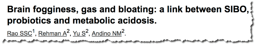Brain fogginess, gas and bloating: a link between SIBO, probiotics and metabolic acidosis